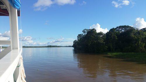Vue sur le fleuve et la forêt