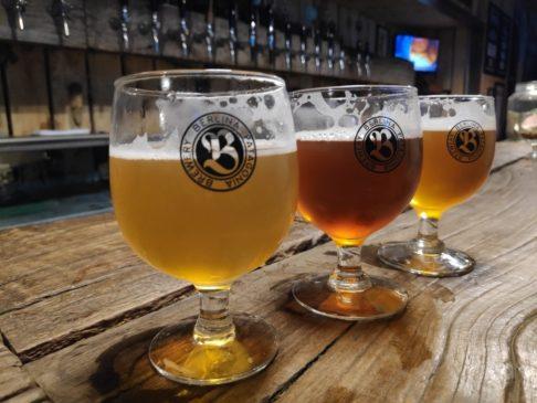 Dégustation de bières à la brasserie Berlina de Colonia suiza