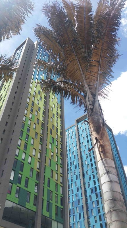 Immeuble vert et bleu