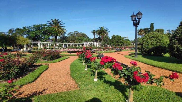 Jardin de roses de Buenos Aires en Argentine