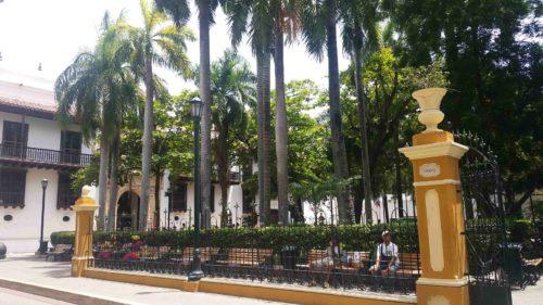 Place avec des palmiers