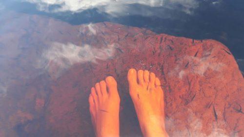 Les pieds dans l'eau avec des petits poisons