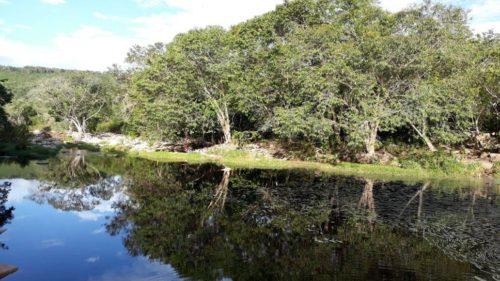 Rivière calme de Ribeirao do Baixo