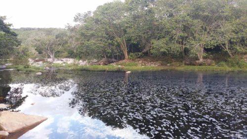 Rivière à Ribeirao do Baixo