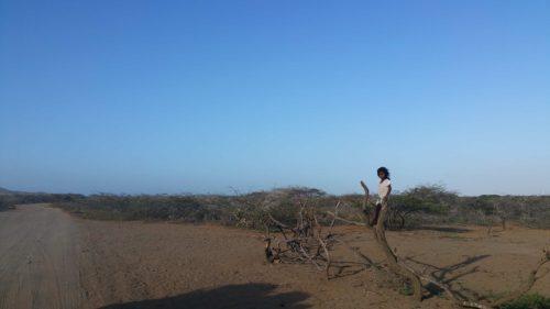 Fillette sur un tronc d'arbre au bord d'une piste ensablée