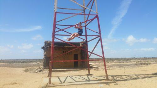 Perchée sur un phare métallique