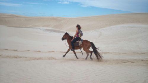 Au trot sur les dunes