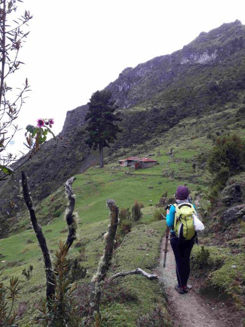 Chemin de randonnée menant à une maison
