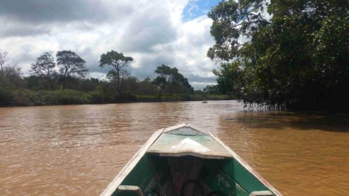 Dans une barque sur une rivière couleur marron