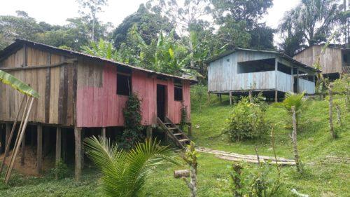 Maisons en bois sur pilotis