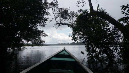 Arrivée en barque sur le lac Tarapoto