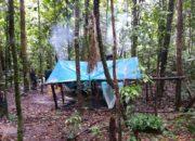 Campement avec bâche et hamacs