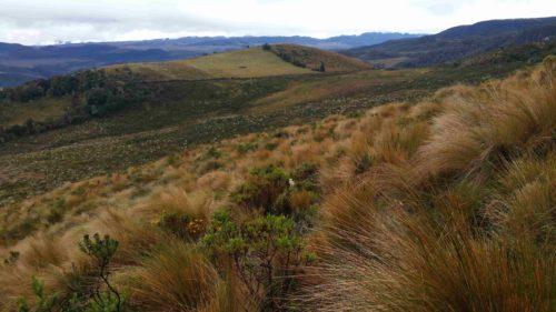 Vu sur la vallée pendant la montée