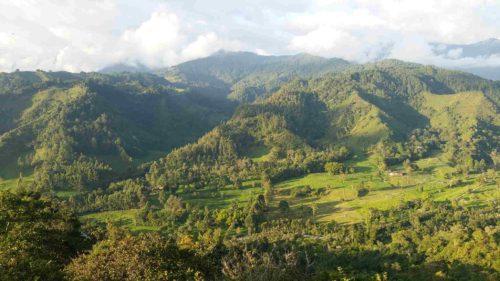 Vue sur une vallée verdoyante