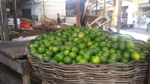 Panier de citron vert