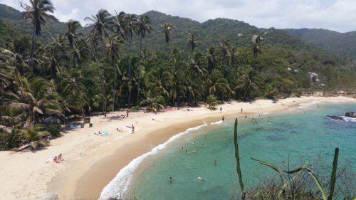 Vue d'en haut de la plage avec les palmiers