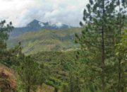 Vue sur les montagnes de Tierradentro