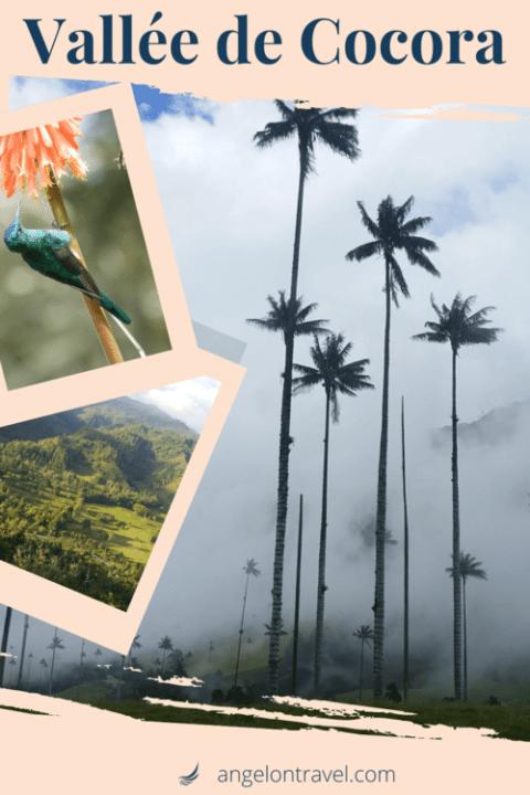 Épingle sur Salento et la Vallée de Cocora